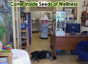 Seeds of Wellness llc